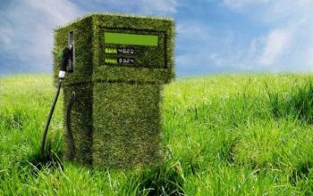 Biocombustibles, combustibles verdes 10