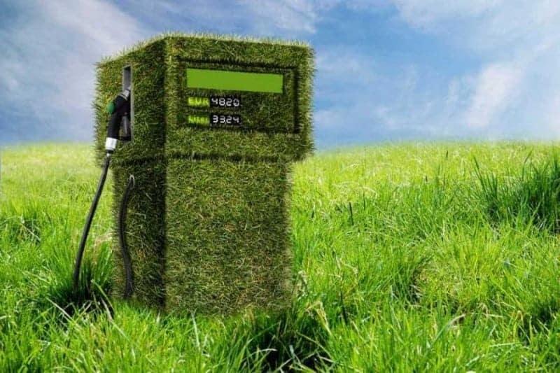 Biocombustibles, combustibles verdes 1