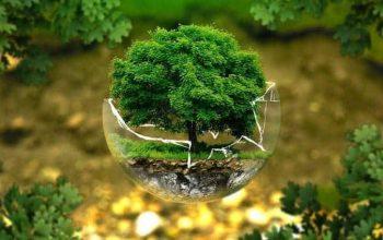 El cambio climático: de qué depende y por qué somos responsables de él 8