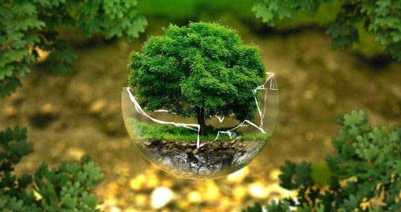El cambio climático: de qué depende y por qué somos responsables de él 1