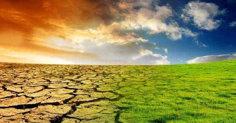 El calentamiento global: ¿cuáles son sus causas y riesgos? 1