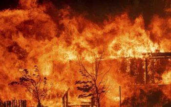 Tierra de incendios, un gran crimen ambiental 2