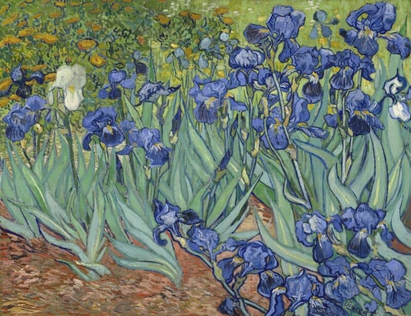 Artista más popular: Vincent van Gogh