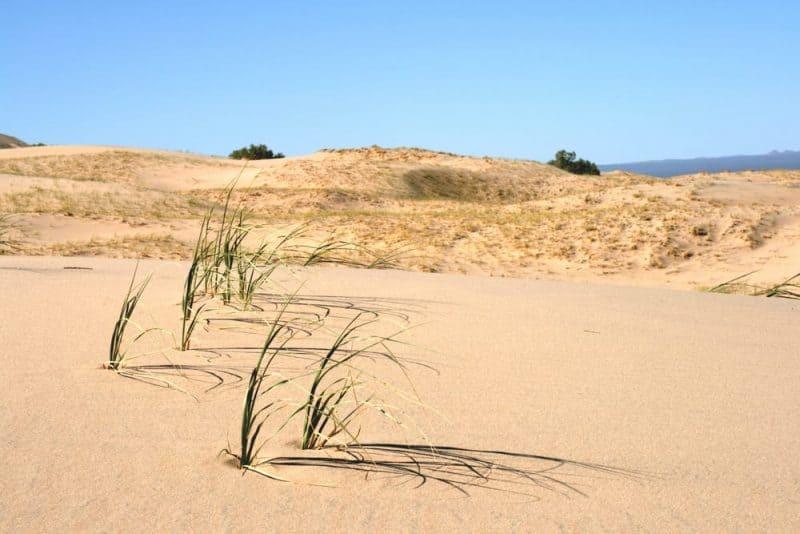 Los lugares más silenciosos - Kelso Dunes