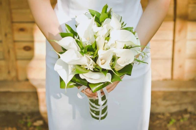Flores de boda más populares - calla lily