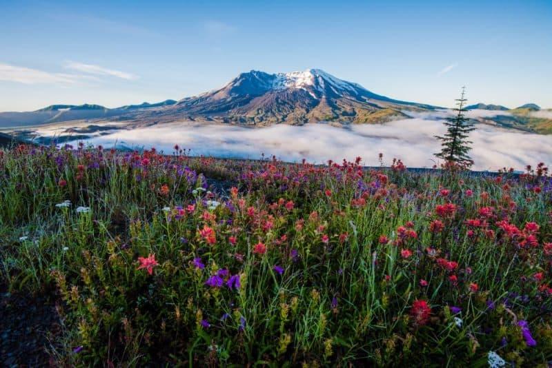 Los volcanes más impresionantes - Mount St Helens