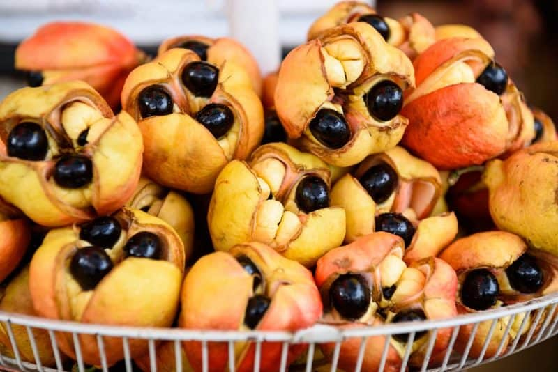 Las frutas más mortíferas - ackee