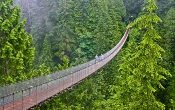 10 puentes más peligrosos del mundo 8