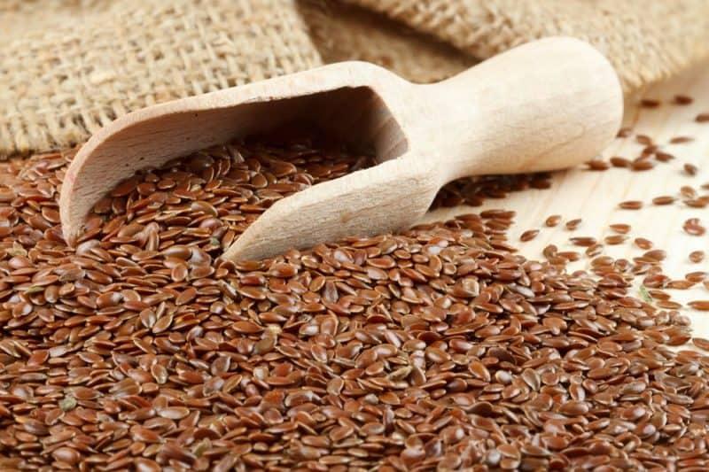 Las semillas más nutritivas - semillas de lino