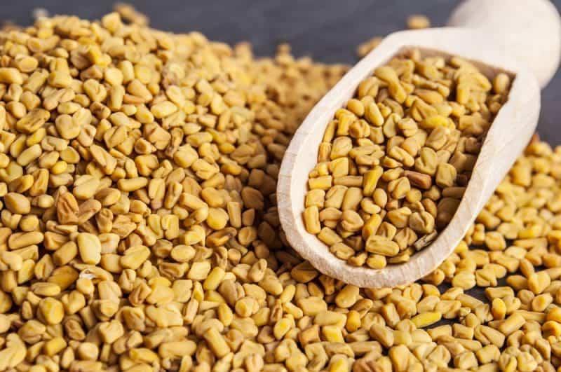Las semillas más nutritivas: semillas de fenogreco