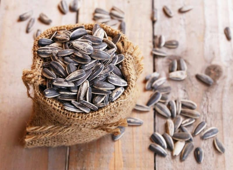 Las semillas más nutritivas - semillas de girasol