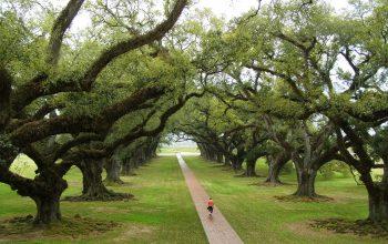 Los 10 lugares más encantados de Louisiana 12