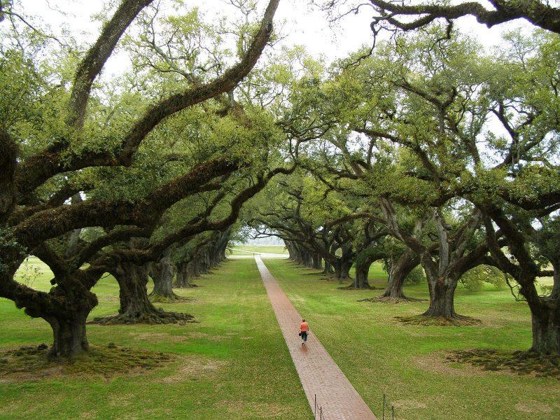 Los 10 lugares más encantados de Louisiana 1