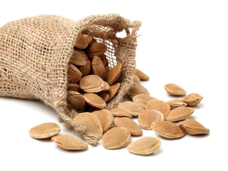 La mayoría de las frutas mortales: semillas de albaricoque
