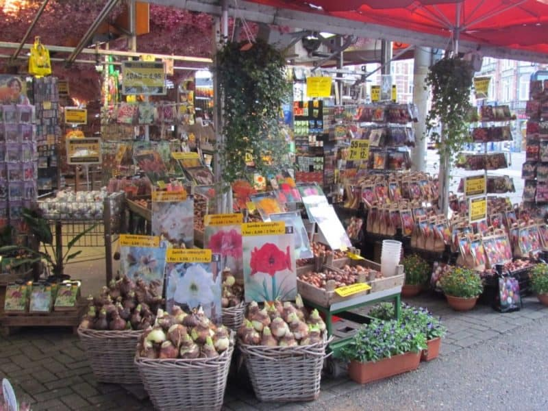 Principales atracciones de Ámsterdam: mercado de flores flotante